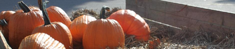 Virginia Pumpkin Growers' Association
